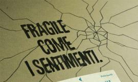Feltrinelli, campagne 2010 2011, Carcasi